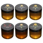 Bee Wild – Tasting Gift Set 100% Pure Raw Unfiltered Honey – Sourwood, Orange Blossom, Wildflower, Lavender Infused, Gallberry, Ghost Pepper 3 Oz Each