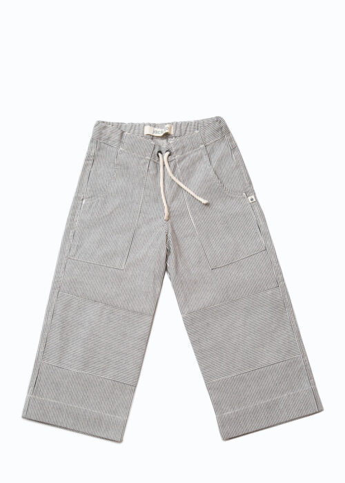 Jackalo Charlie pants in engineer's stripe organic cotton