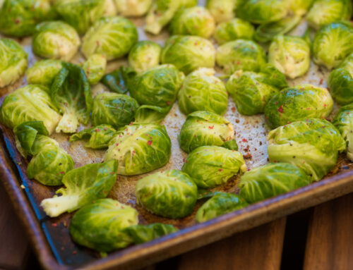 Is Vegetarian Your Thing: Animal-Free Holiday Recipes